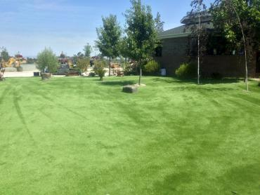 Artificial Grass Photos: Synthetic Grass Cost Mountain Park, Georgia Home And Garden, Parks