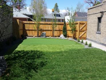 Artificial Grass Photos: Synthetic Grass Cost Richmond Hill, Georgia Putting Green Turf, Backyard Ideas