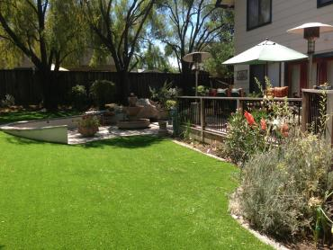 Artificial Grass Photos: Synthetic Grass Cost Rossville, Georgia Landscape Photos, Backyards