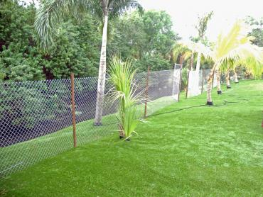 Artificial Grass Photos: Synthetic Grass Glennville, Georgia Roof Top, Backyard Designs