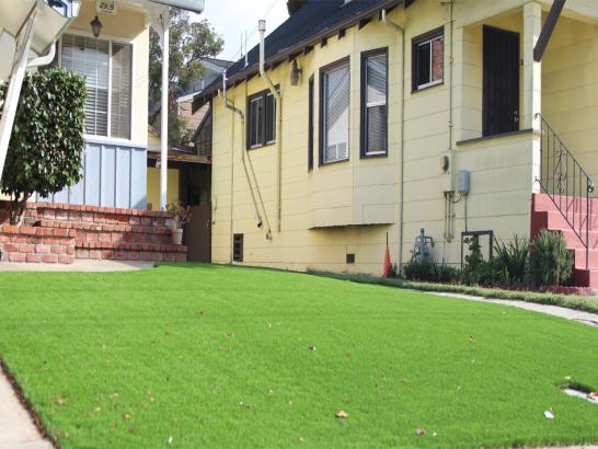 Artificial Grass Photos: Synthetic Grass Lake City, Georgia Roof Top, Front Yard Ideas