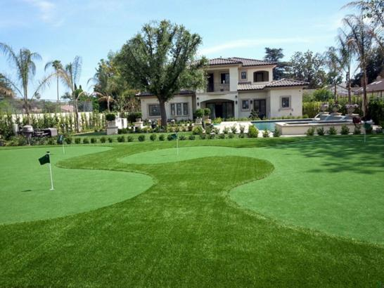 Artificial Grass Photos: Synthetic Grass Patterson, Georgia Lawns, Front Yard Landscaping