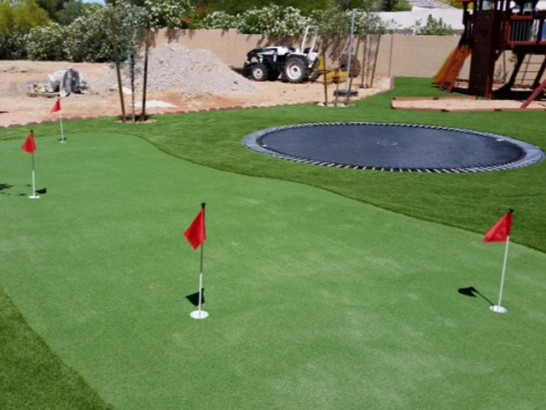 Synthetic Grass Plains, Georgia How To Build A Putting Green, Backyard artificial grass