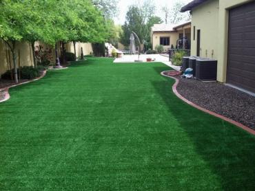 Artificial Grass Photos: Synthetic Lawn Arabi, Georgia Landscaping Business, Backyard Design