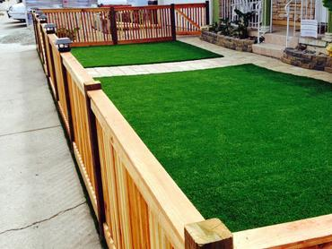 Artificial Grass Photos: Synthetic Lawn Grovetown, Georgia Home And Garden, Landscaping Ideas For Front Yard