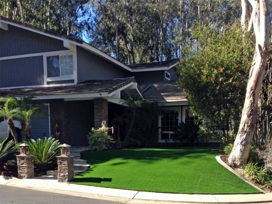 Artificial Grass Photos: Synthetic Lawn Snellville, Georgia City Landscape, Front Yard Ideas