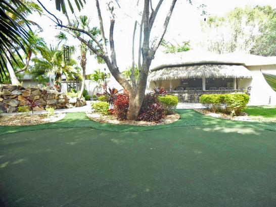 Artificial Grass Photos: Synthetic Turf Kings Bay Base, Georgia Home Putting Green, Commercial Landscape