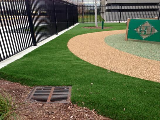 Artificial Grass Photos: Synthetic Turf Supplier East Dublin, Georgia Landscape Ideas, Commercial Landscape