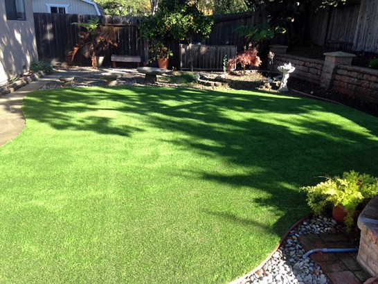 Artificial Grass Photos: Synthetic Turf Supplier Lindale, Georgia Paver Patio, Backyard Landscape Ideas