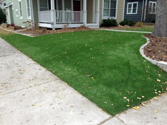 Front Yard Landscaping Georgia : Artificial turf installation dunwoody georgia lawn and