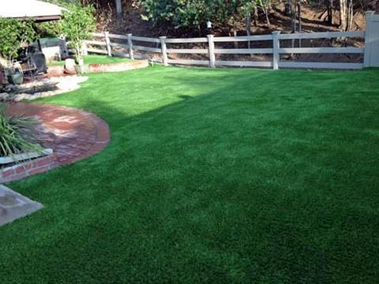 Artificial Grass Photos: Turf Grass Dasher, Georgia Cat Playground, Small Backyard Ideas