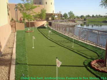 Artificial Grass Photos: Turf Grass Marshallville, Georgia Rooftop, Backyard Garden Ideas
