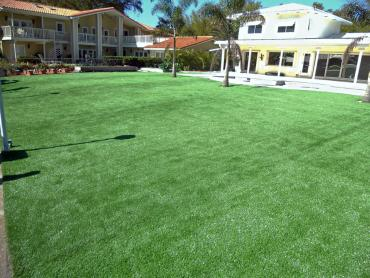Artificial Grass Photos: Turf Grass Nicholls, Georgia Landscape Rock, Kids Swimming Pools