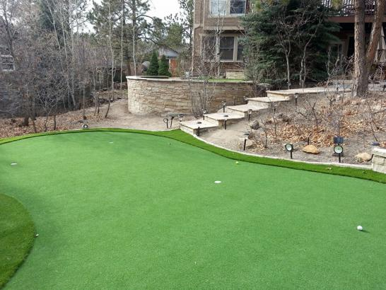Artificial Grass Photos: Turf Grass Senoia, Georgia Putting Green Flags, Backyard Design