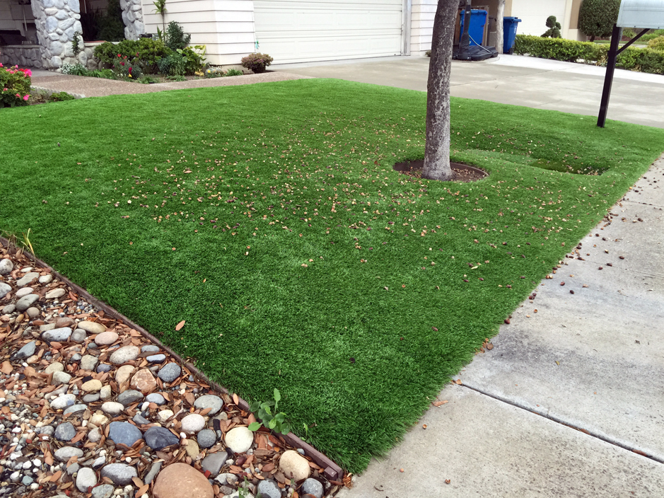 Plastic Grass Lithonia Georgia Rooftop Front Yard Landscaping