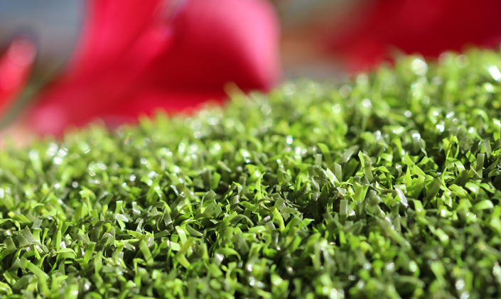 Artificial Grass Pro Putt-44 Artificial Grass Atlanta Georgia
